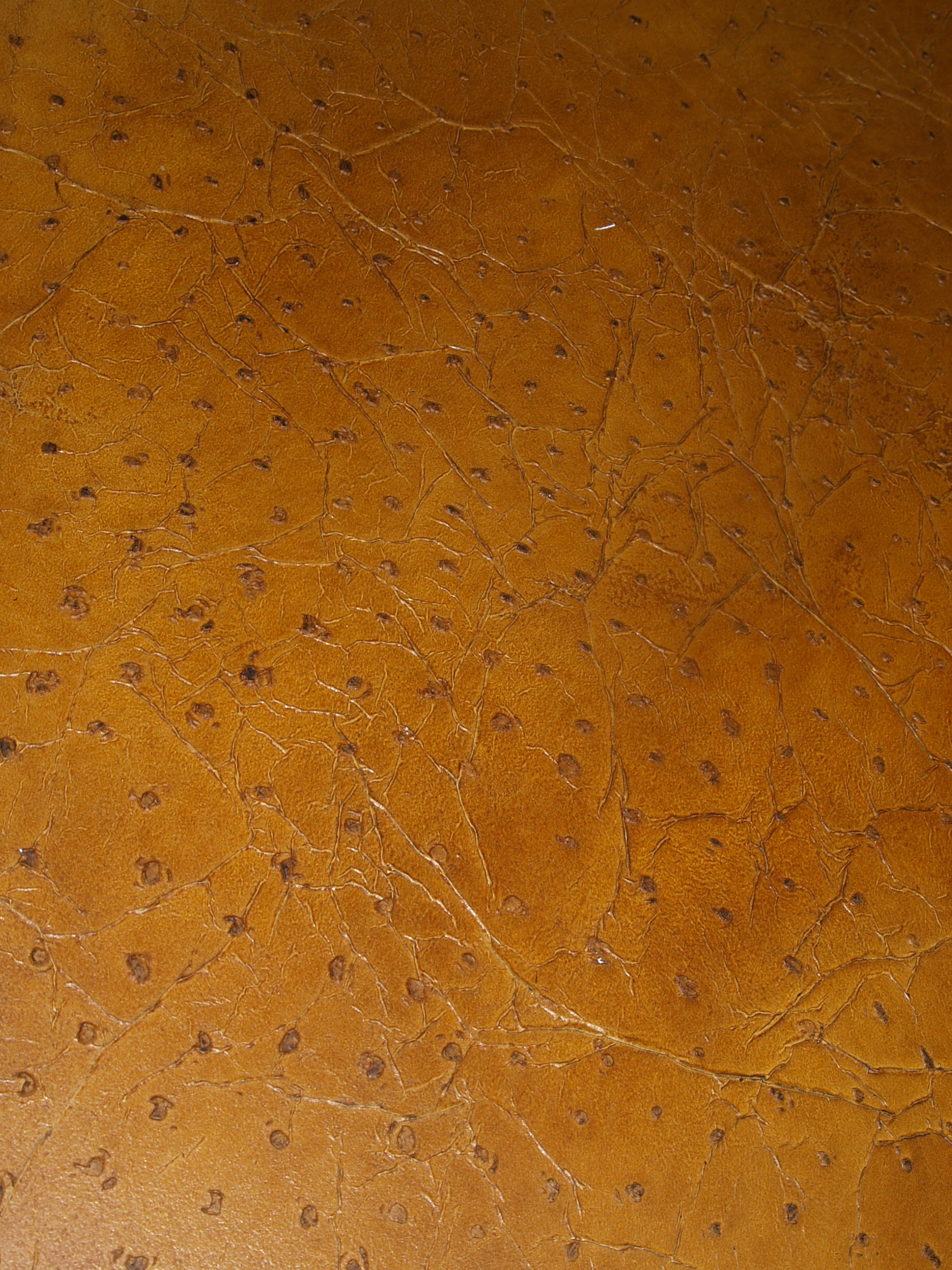 Ostrich leather texture Faux finish